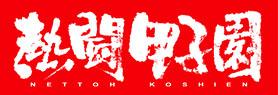 熱闘甲子園2017